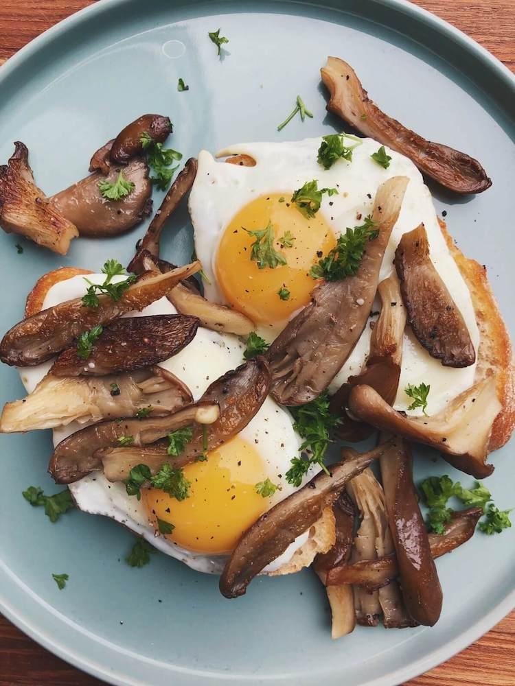Brød med æg og østershatte ingredienser