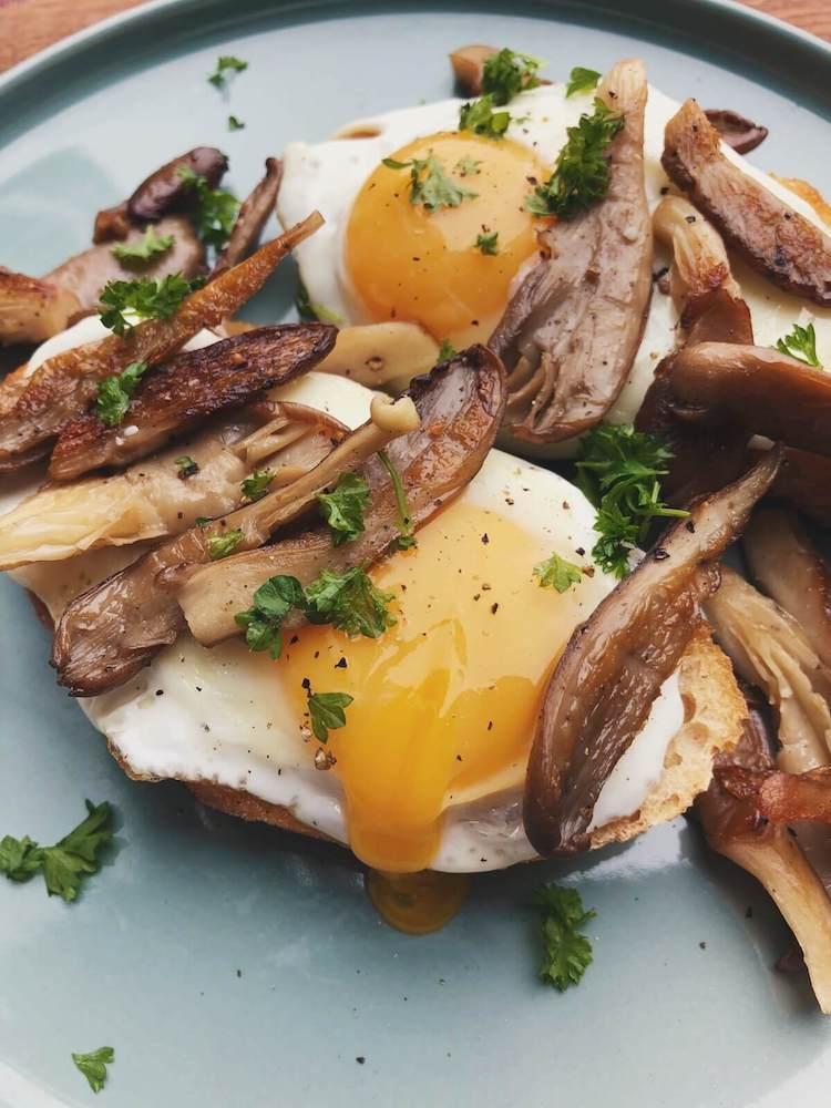 Brød med æg og østershatte opskrift