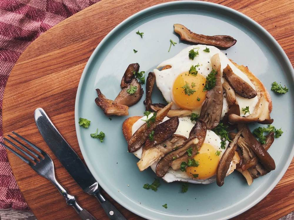 Brød med æg og østershatte