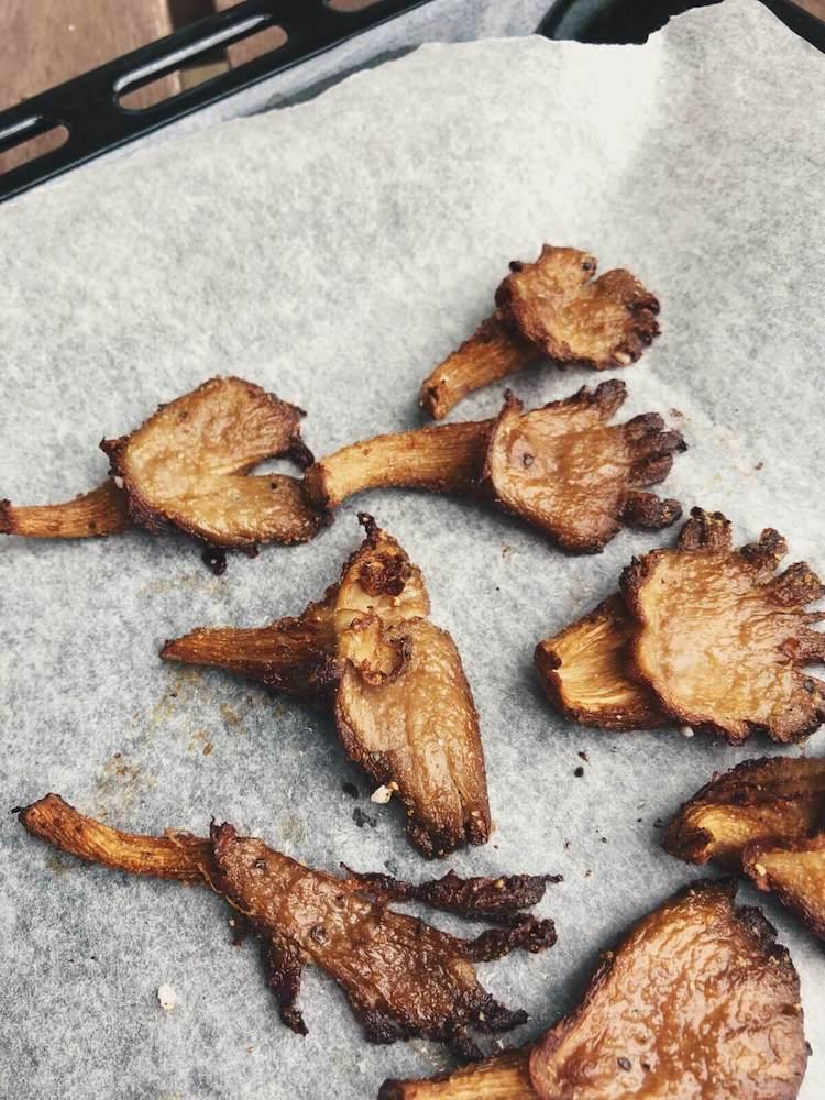 Østershatte i ovnen opskrift